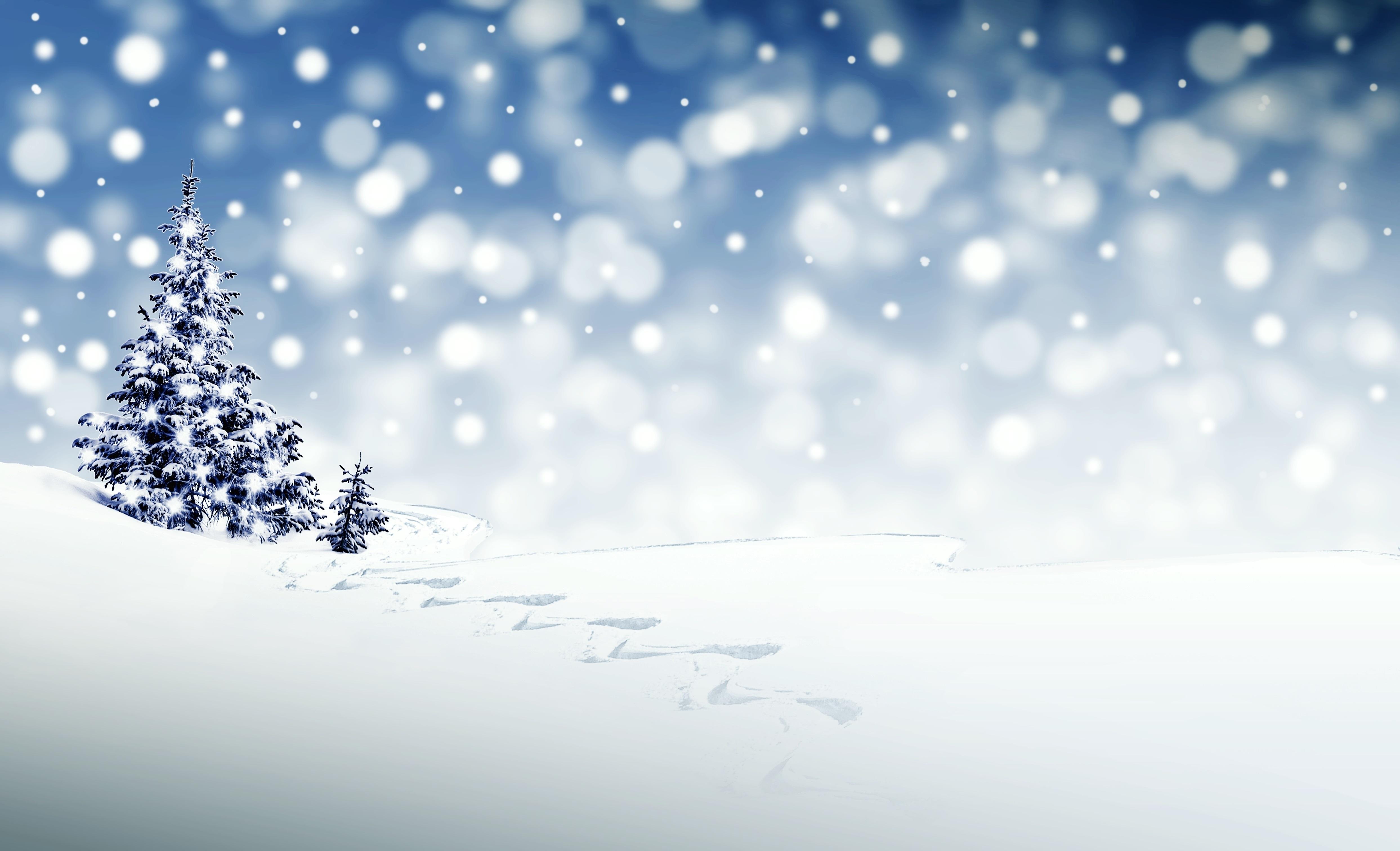 christmas-3864552